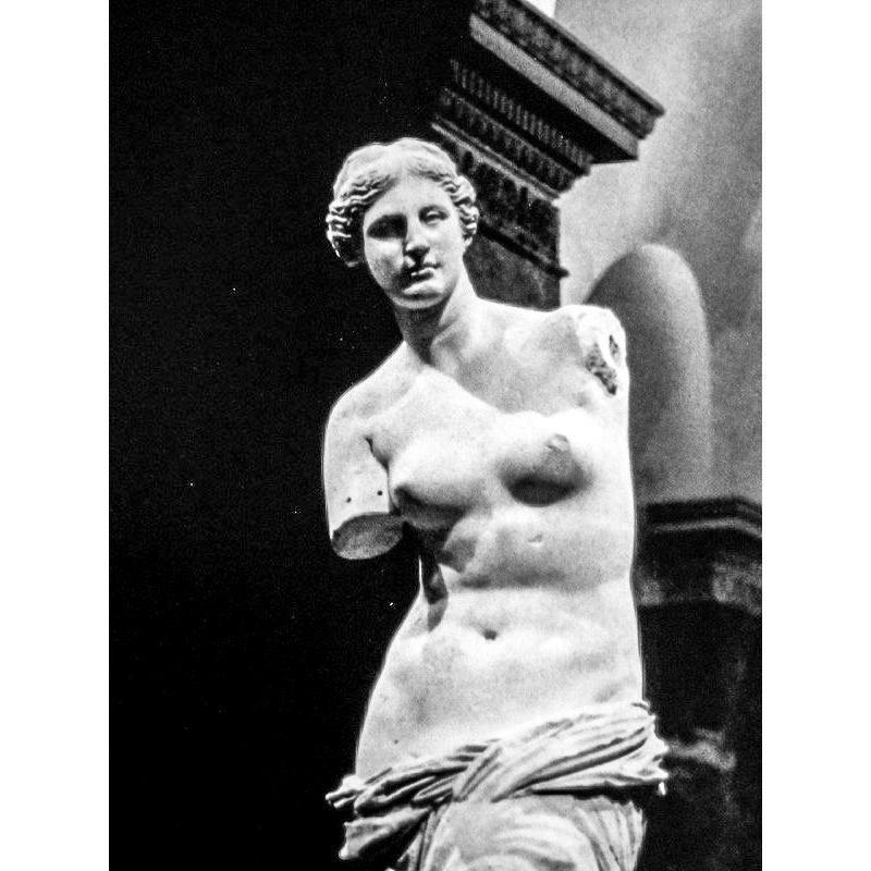 Milo's Venus (1998)