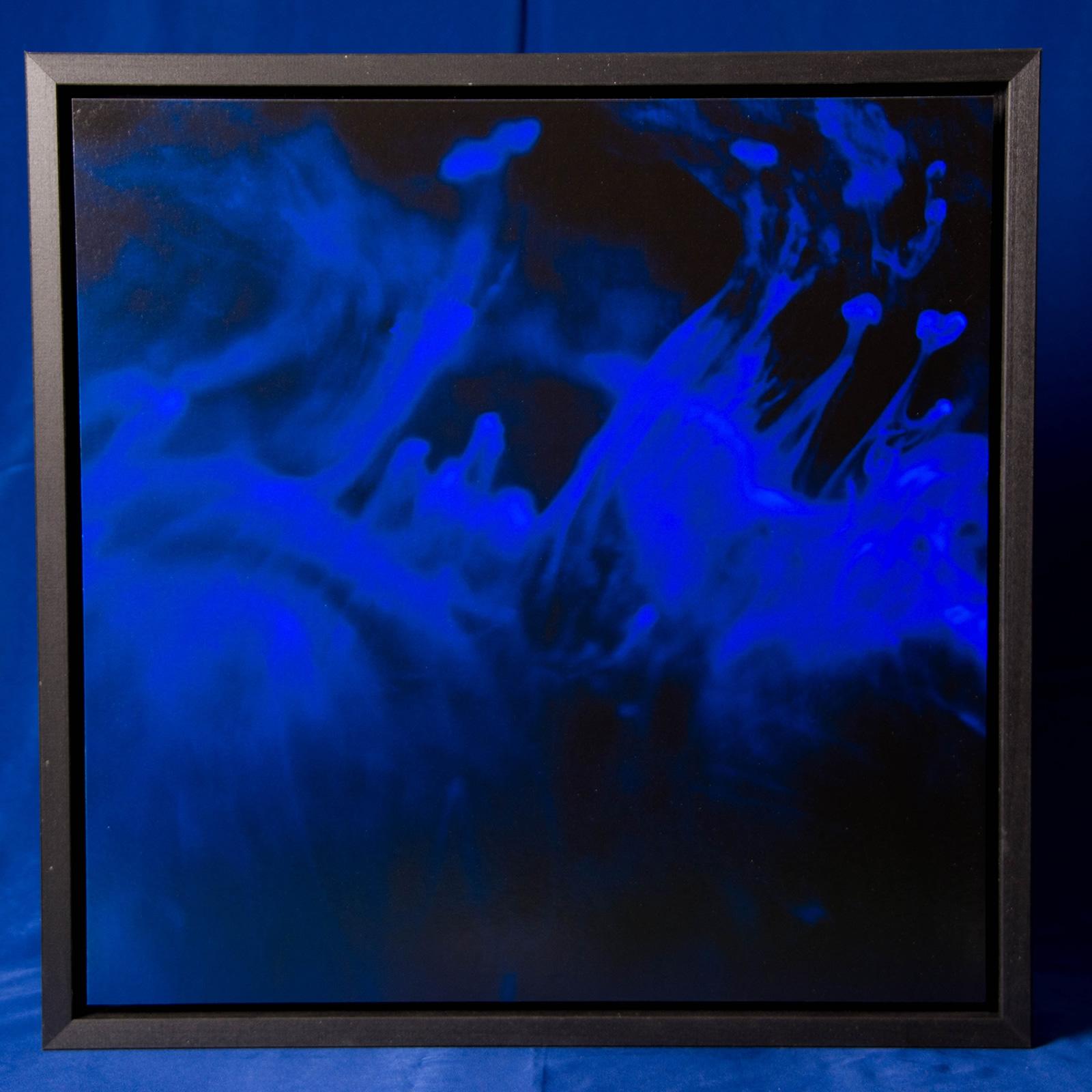 microcosmic visions #2 40x40 cm ca.