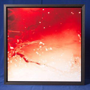 microcosmic visions #5 40x40 cm ca.